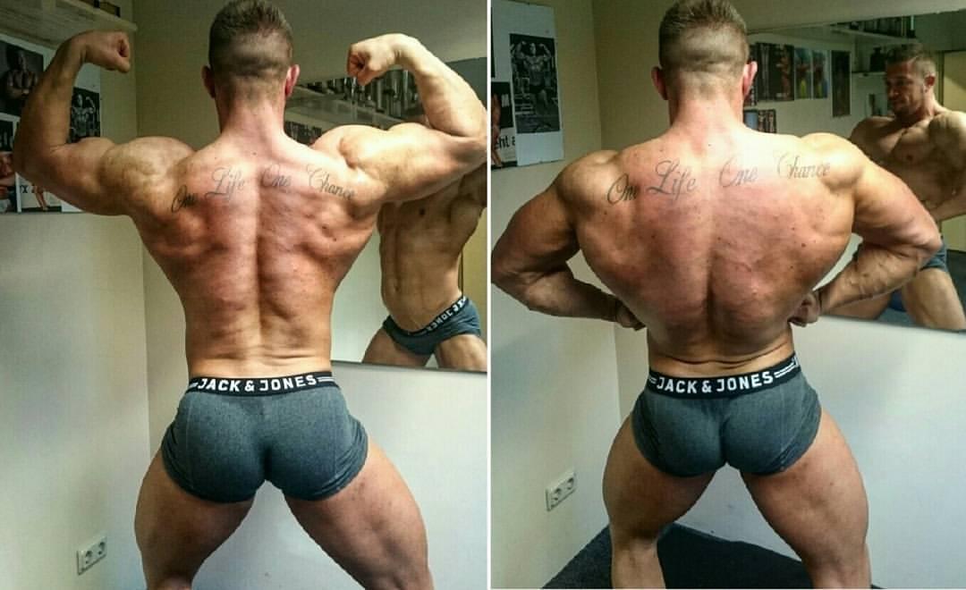 Rückenmuskeln im Bodybuilding